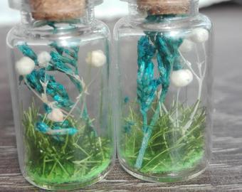 Náušnice - modrý vřes a bílé kuličky, sušené květy