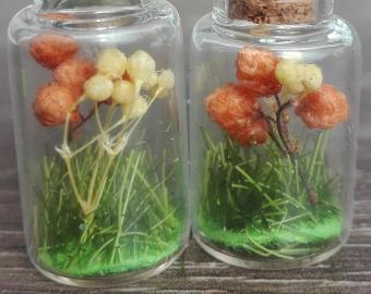 Náušnice - oranžové a jemně žluté kuličky, sušené květy