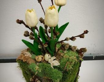 Jaro v kostce