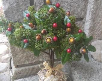 Stromek na přání :-)