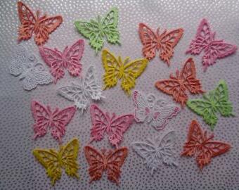 krajkový motýl